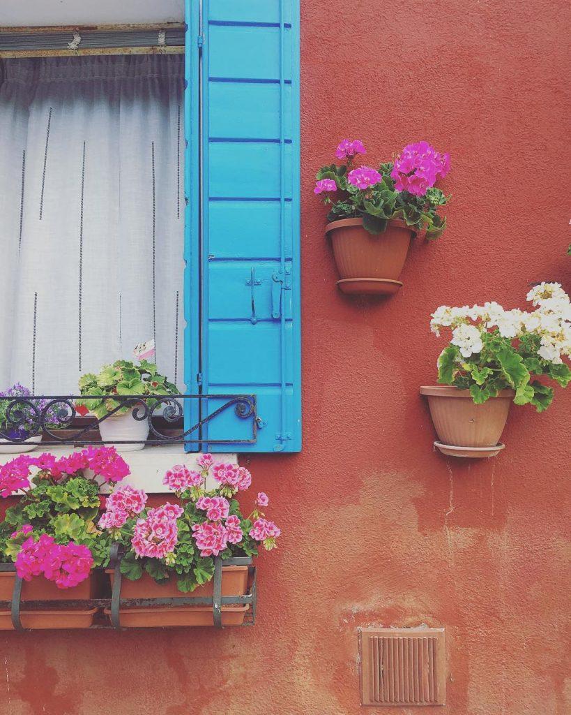 Sempre più convinta che Burano sia uno dei miei posti nel mondo: non riesco a fare un passo senza entusiasmarmi per una porta, una finestra o un vaso di fiori colorati ❤️ #lifewelltravelled #audreylovesvenice #burano