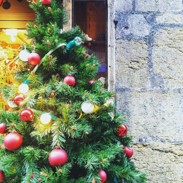 Christmas is here  waitingforchristmas audreyloveschristmas christmastree