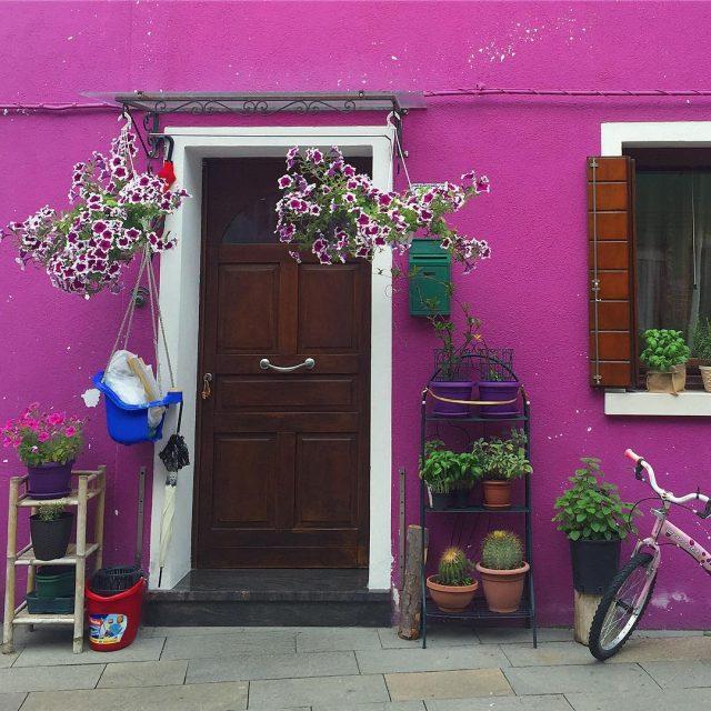 Voglio una casa che sappia di Burano Di viola dihellip